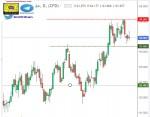 تحليل مؤشر الدولار - فاصي زمني يومي - 19 - أكتوبر - 2021